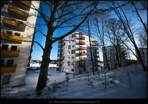 9767-Punkthus-skog