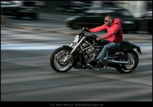 7882-Rider-i-rott
