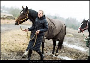 Uhip hästkläder