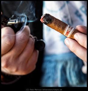 7263-Tander-cigar