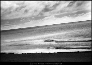 Morgon ljus över stranden