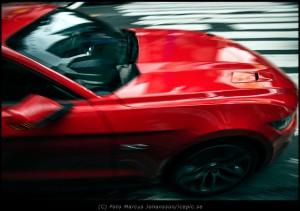 1449-New-Mustang